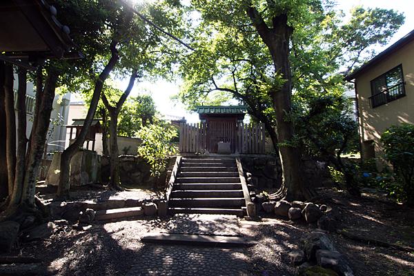 松姤社境内の風景