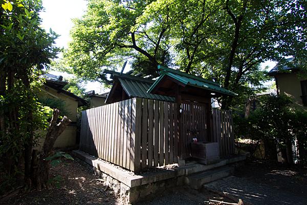 松姤社社殿横から