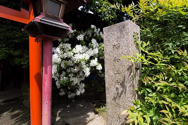 樫ノ木龍神社号標とツツジ