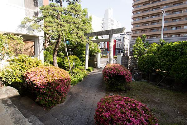 三喜神社境内の風景