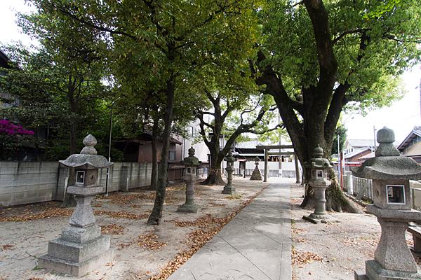 堀越神明社境内の風景