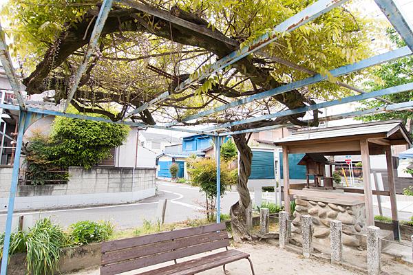 浜田神社と藤棚