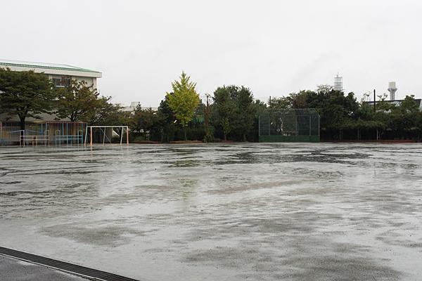 雨に濡れた小学校のグラウンド