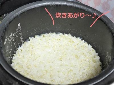 こんにゃく米 炊きあがり