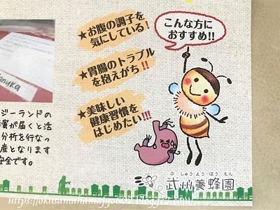 武州養蜂園 マヌカクリーミー蜂蜜のパンフレット