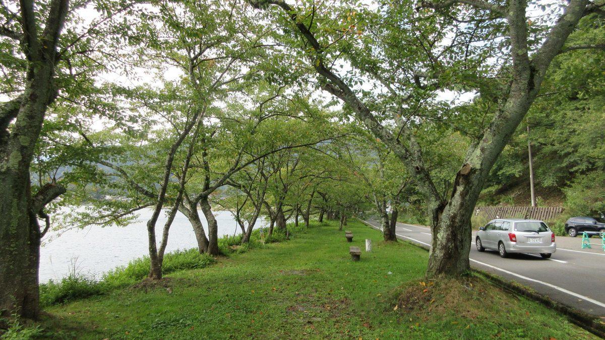 1709-26-琵琶湖⑦-IMG_1357