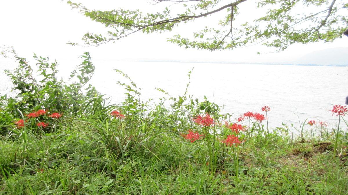 1709-20-琵琶湖⑦-IMG_1349
