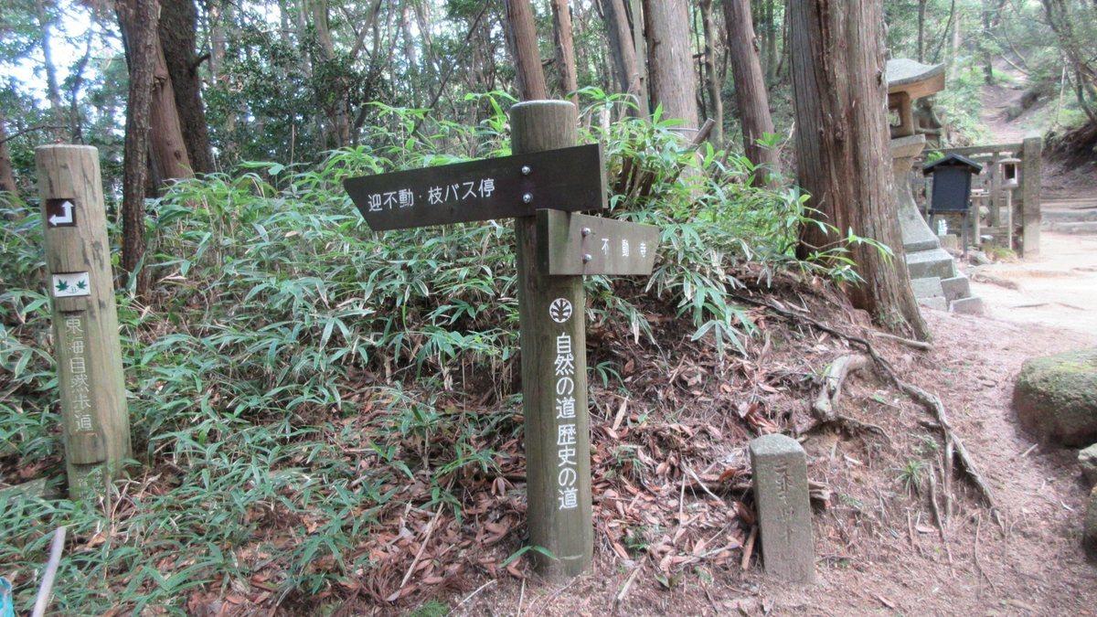 1709-28-太神山-IMG_1426