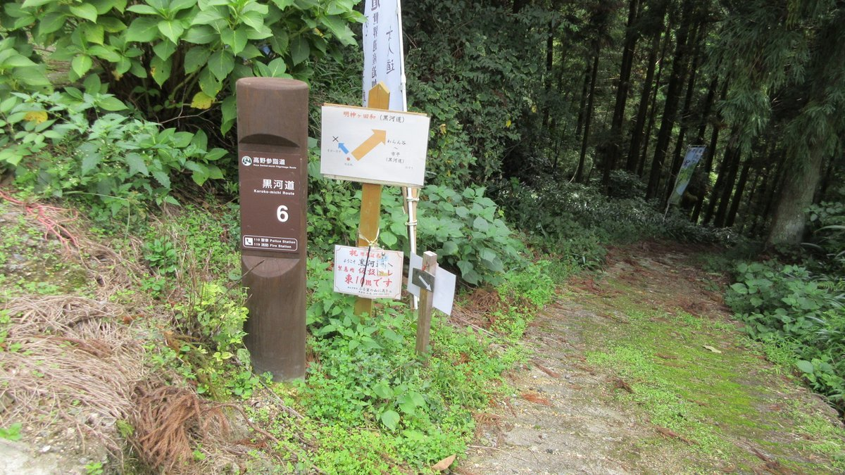 1709-32-橋本-IMG_1553