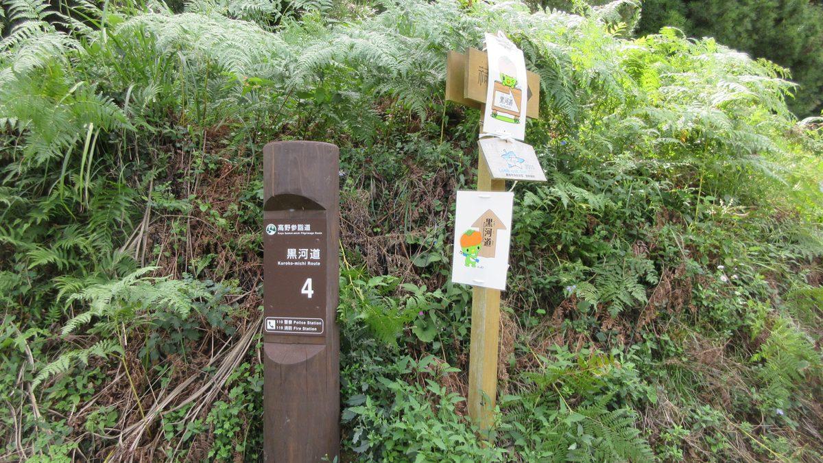 1709-28-橋本-IMG_1549