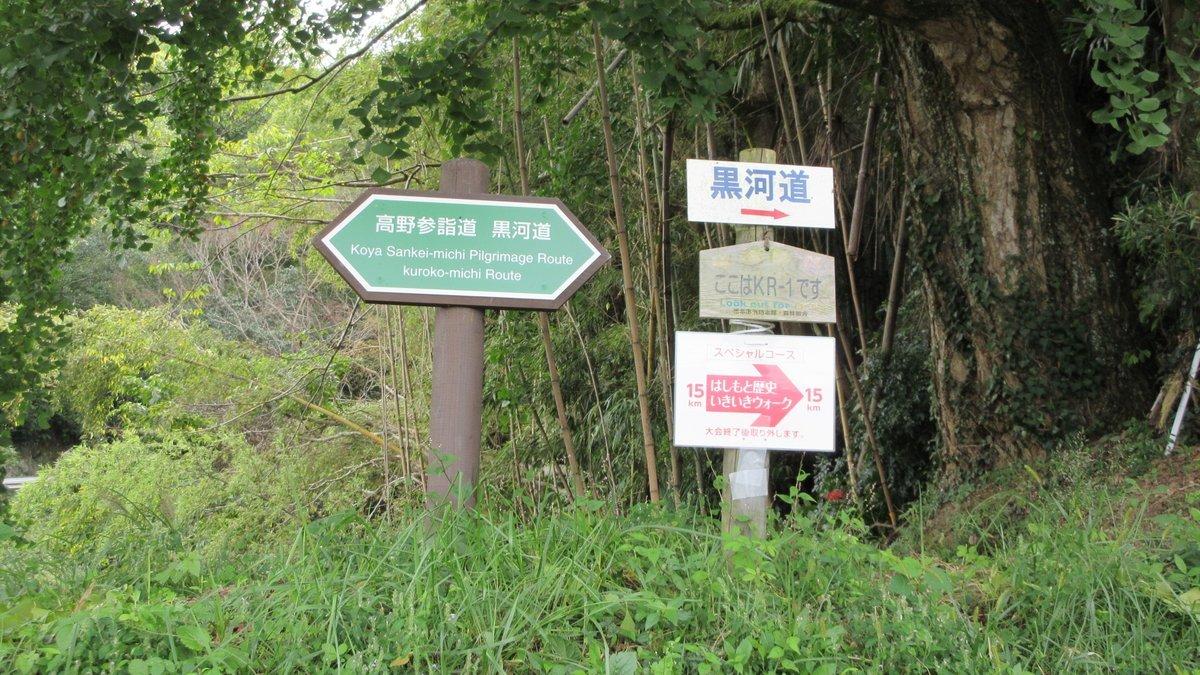 1709-21-橋本-IMG_1533