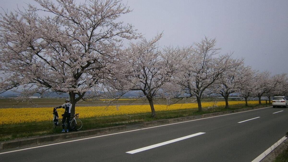 1709-22-琵琶湖⑧-IMG_1616-P4120009