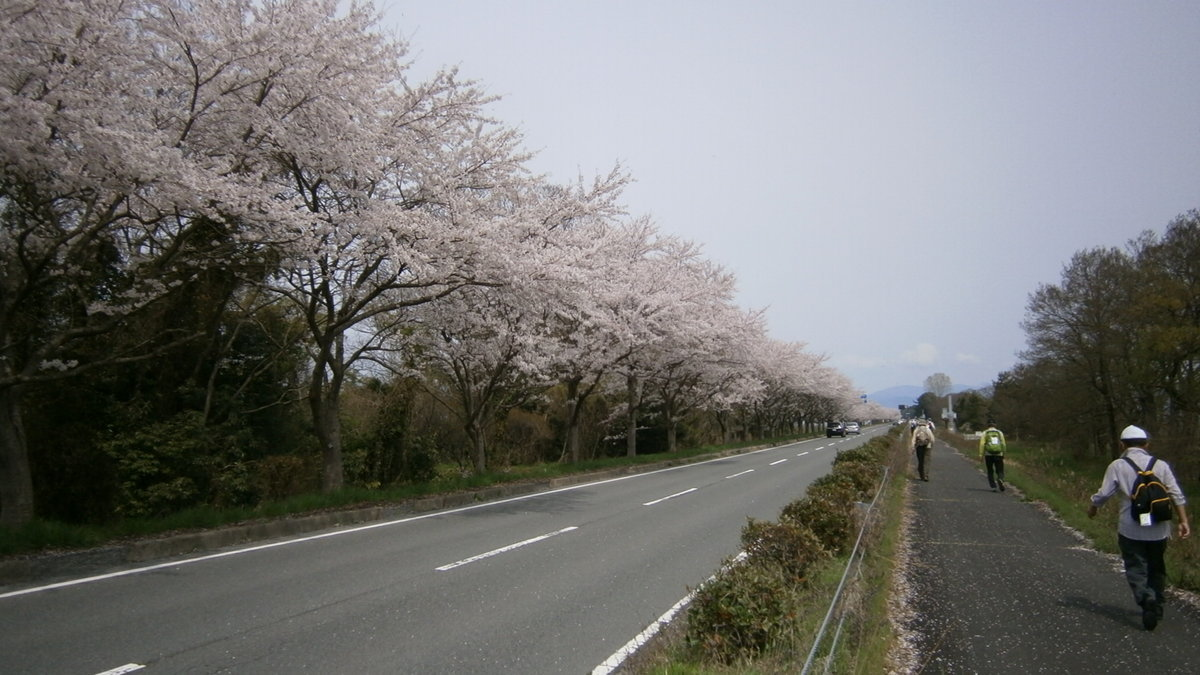 1709-21-琵琶湖⑧-IMG_1616-P4120008