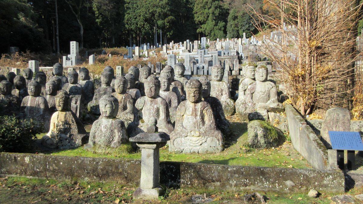 1712-09-琵琶湖⑨補-IMG_2246