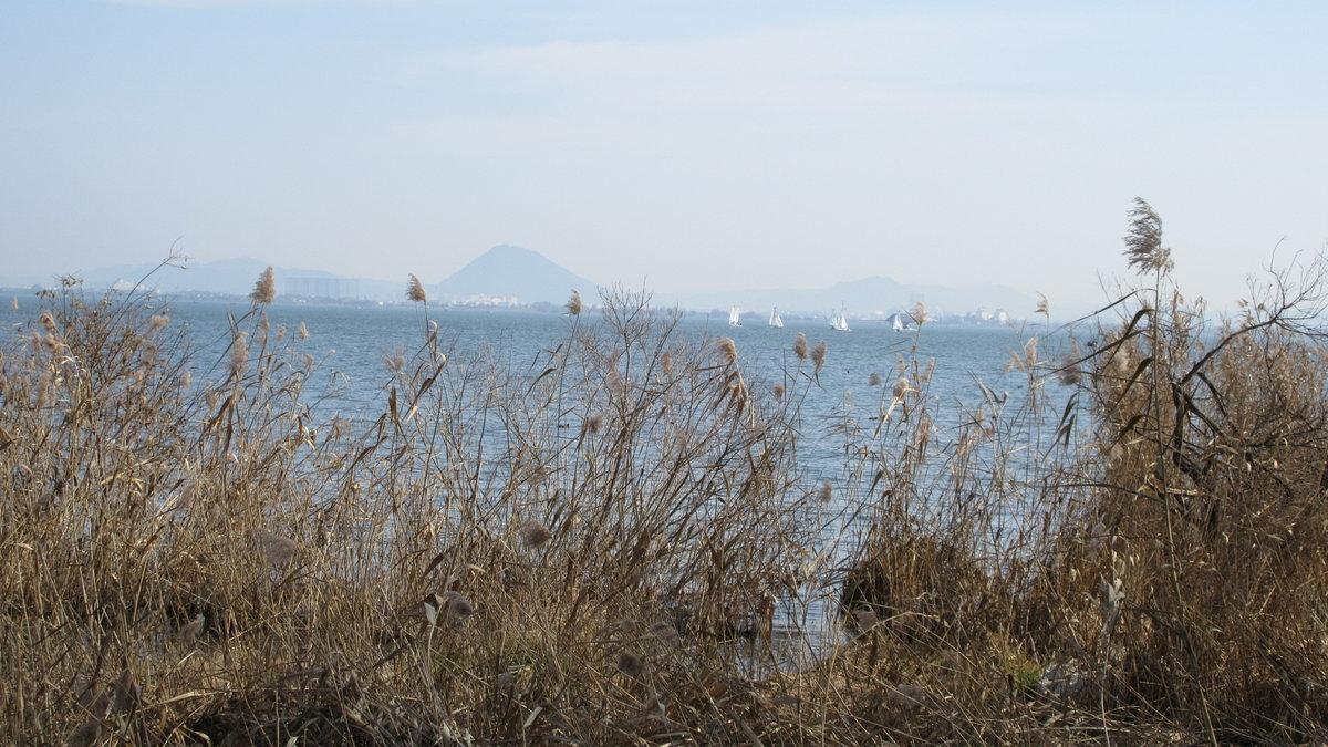 1712-17-琵琶湖⑩-IMG_2427