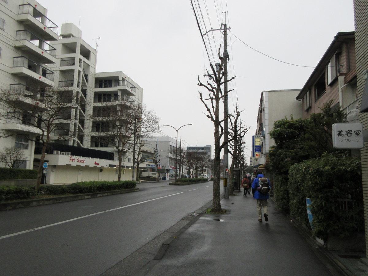 1801-03-狸谷山-IMG_2522
