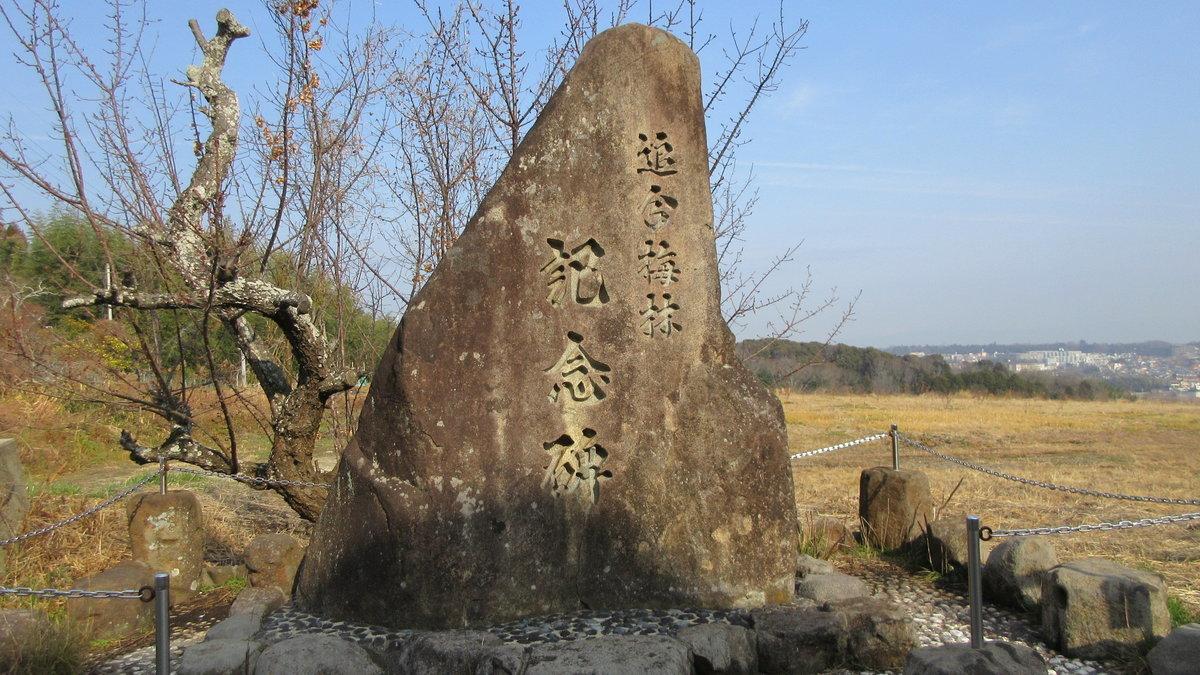 1801-12-伊勢参宮③-IMG_2763