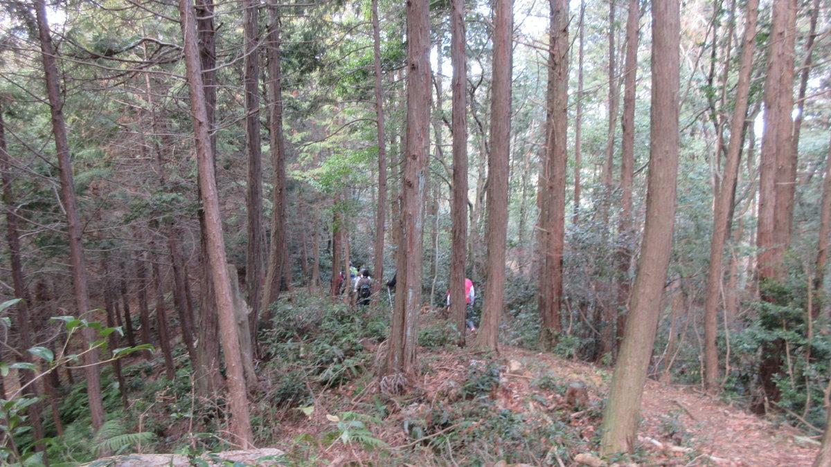 1802-11-天王山-IMG_2903