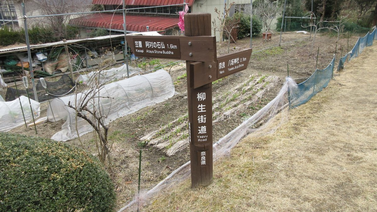 1802-32-柳生街道-IMG_3114