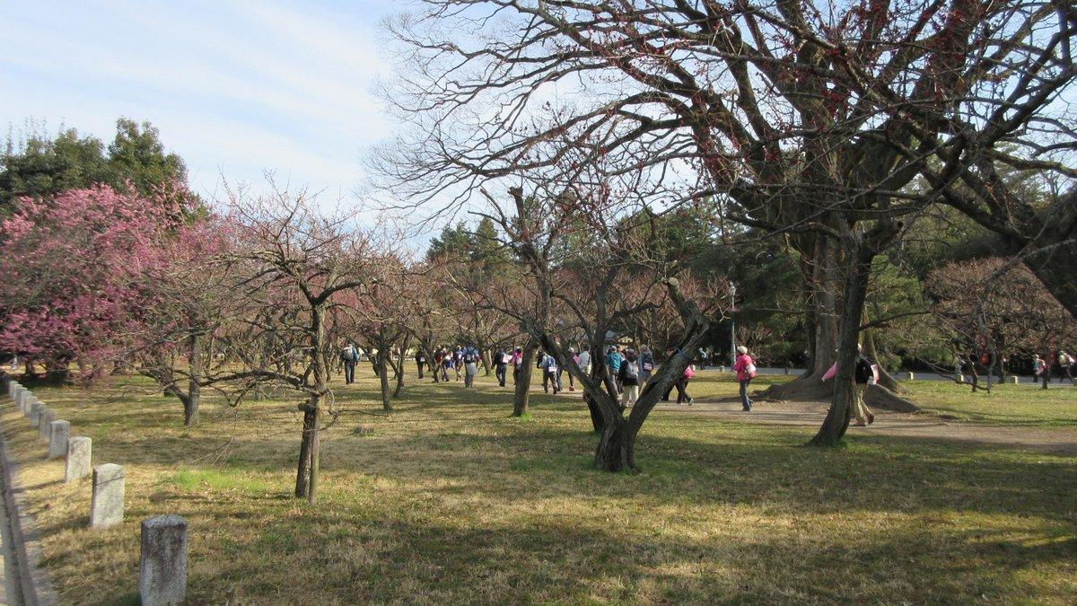 1803-10-京都1日目-IMG_3153