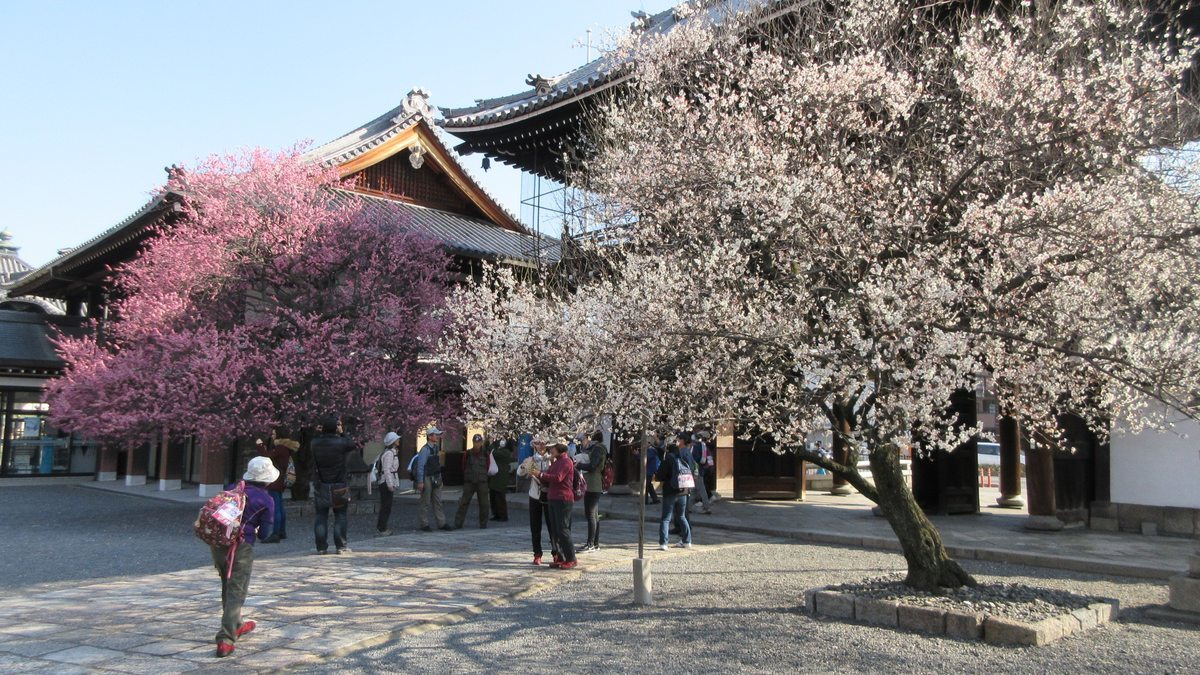 1803-03-京都2日目-IMG_3200