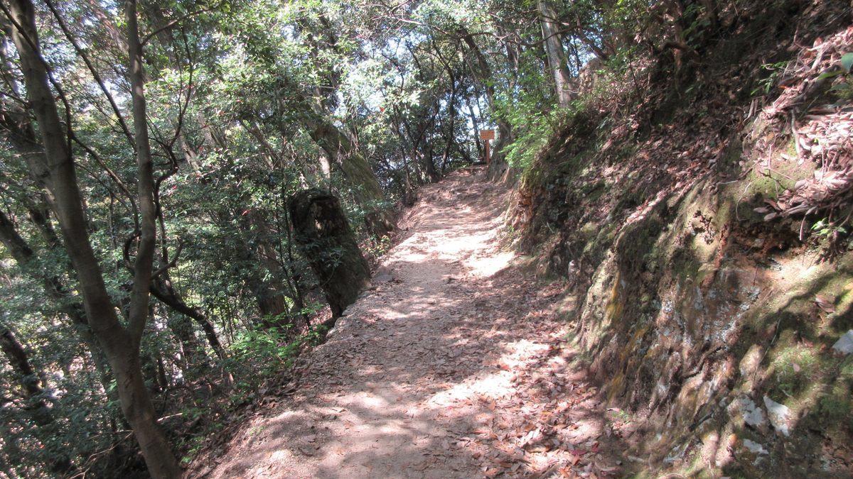 1804-09-金華山-IMG_3909