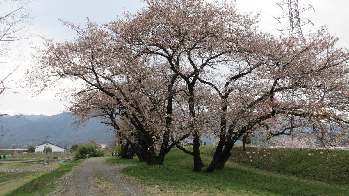 1804-19-松本1日目-IMG_4053