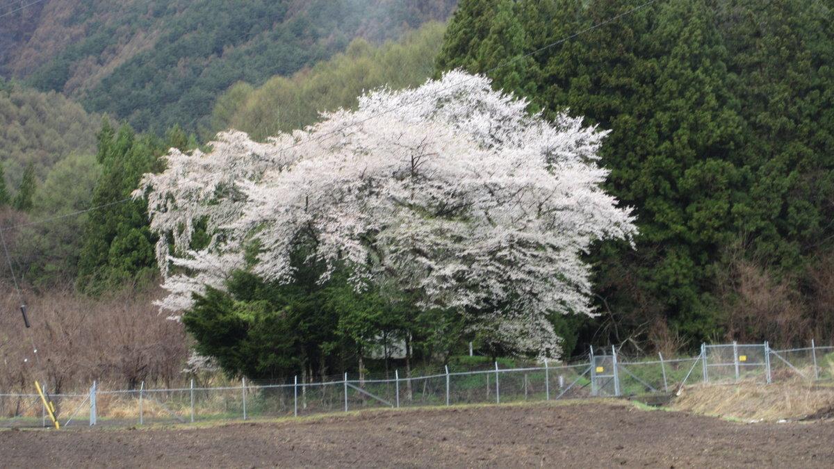 1804-28-松本2日目-IMG_4171