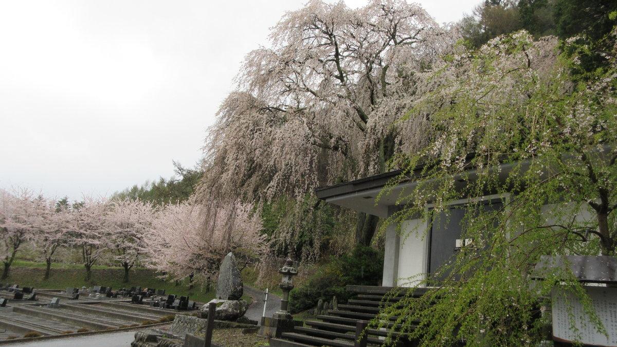 1804-23-松本2日目-IMG_4160