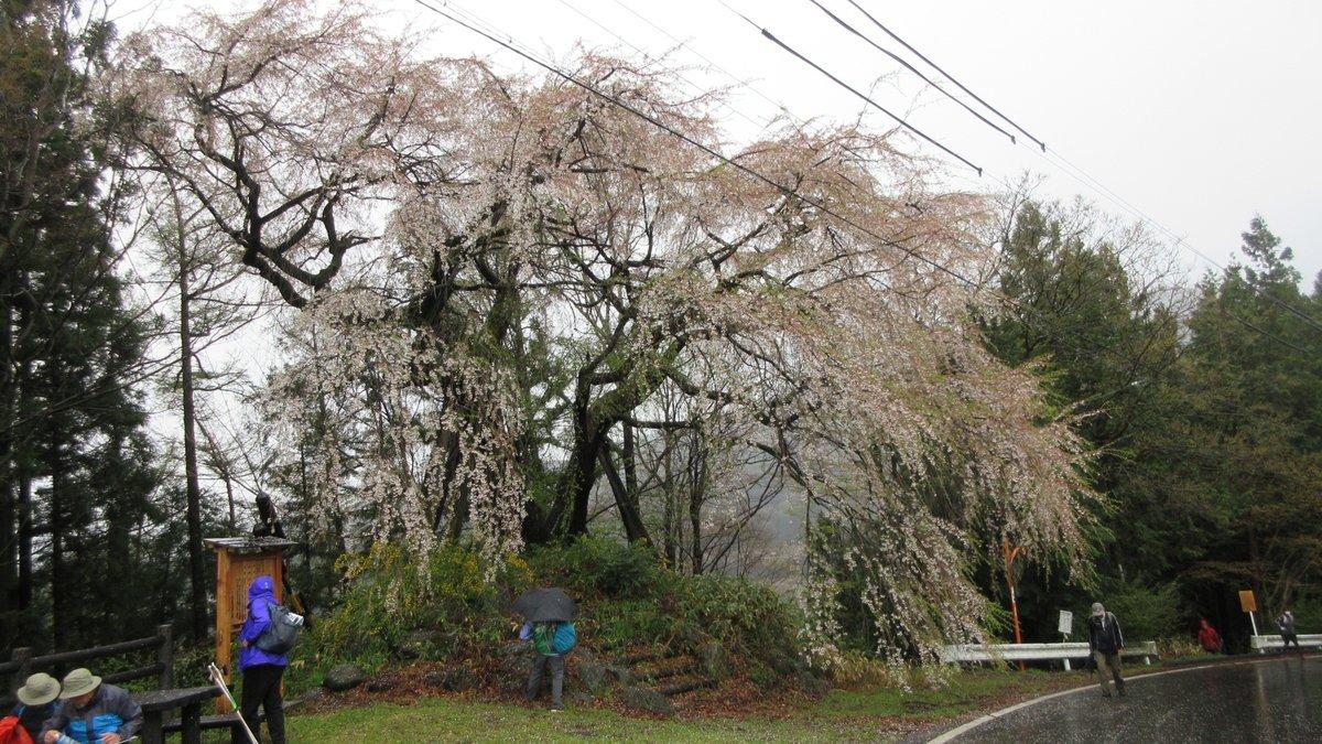 1804-20-松本2日目-IMG_4155