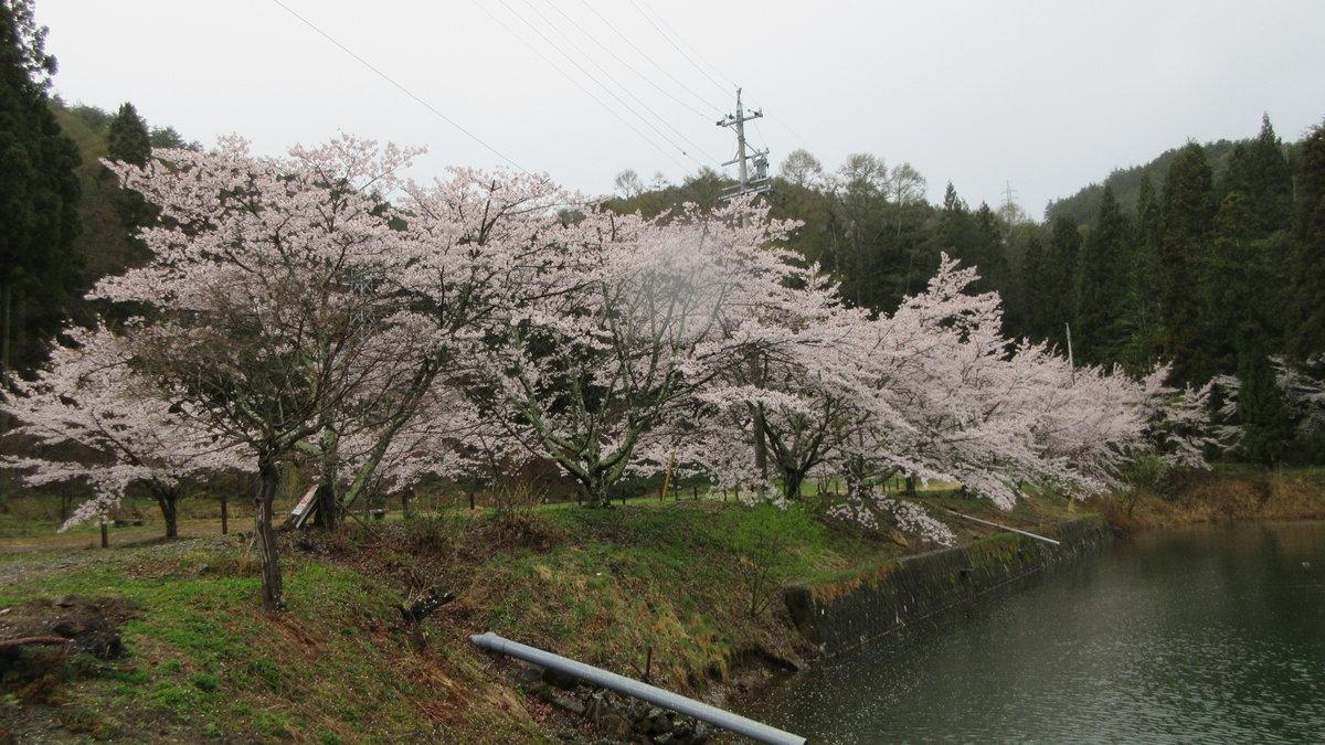 1804-07-松本2日目-IMG_4108