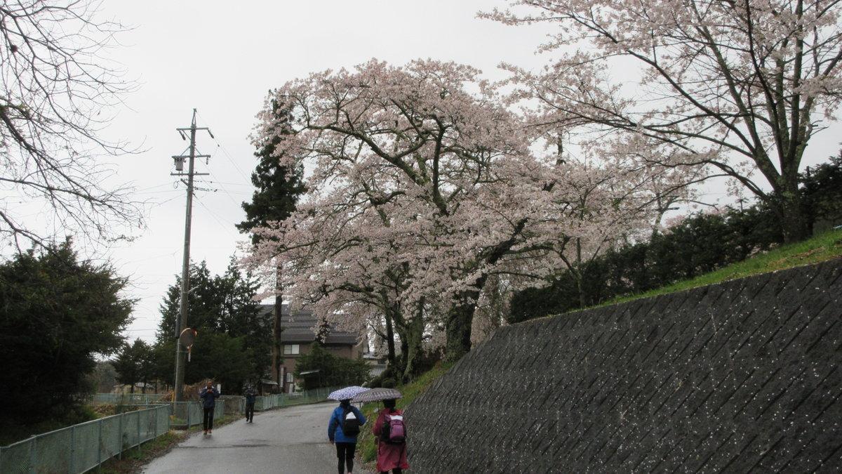1804-06-松本2日目-IMG_4104