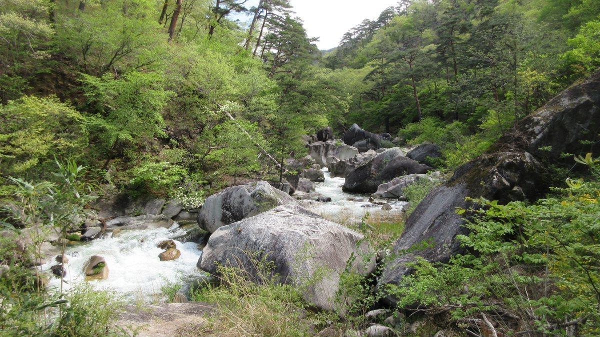 1804-06-昇仙峡-IMG_4274