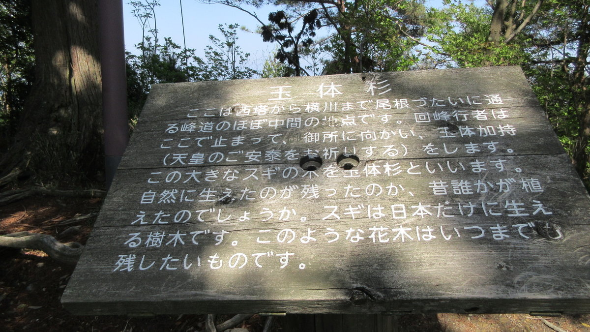 1804-38-京都トレイル-IMG_4469