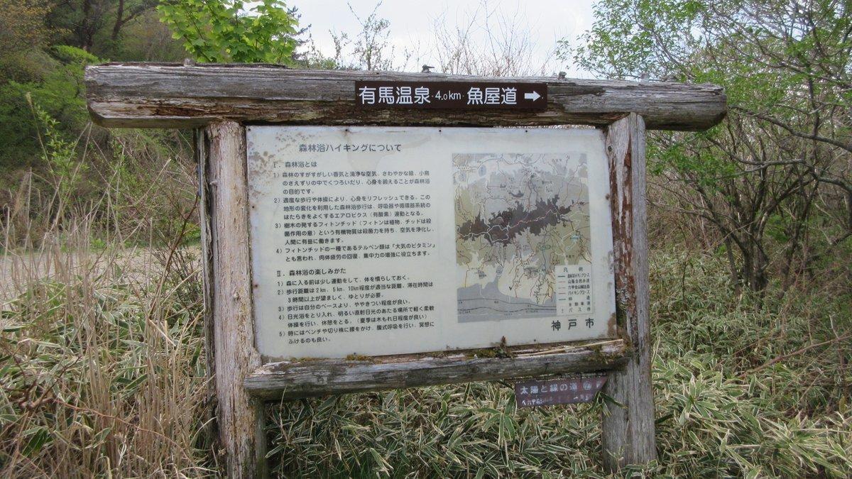 1805-23-六甲山-IMG_4574