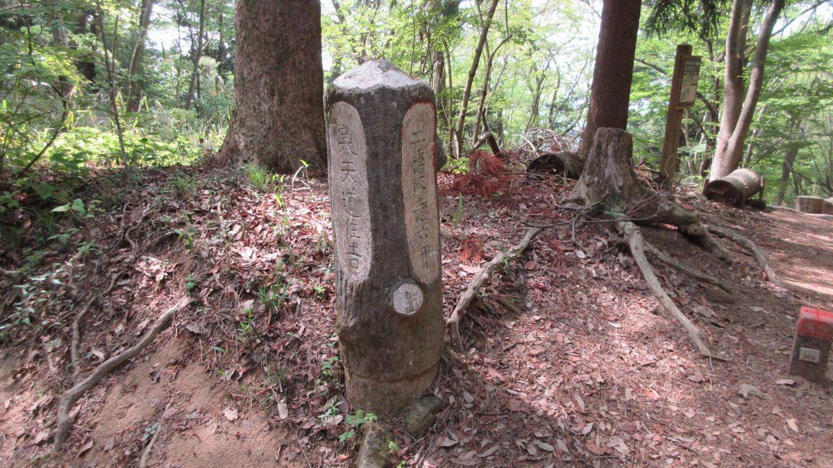 1805-06-六甲山-IMG_4523