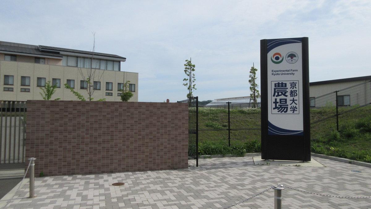 1805-02-大仏鉄道-IMG_4613