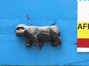 hetauma gorilla (1)