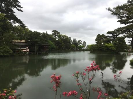 20180510兼六園ほか (4)