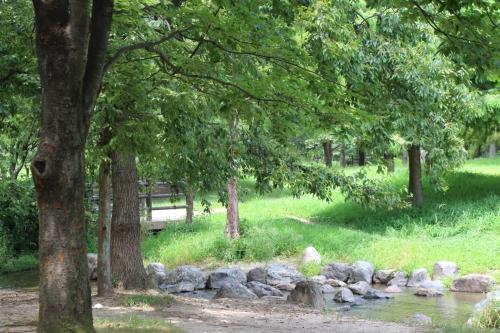 鶴見緑地 水遊び