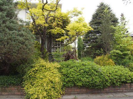 my-garden 152