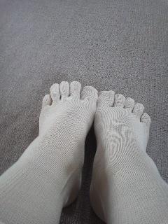 2冷えとり靴下180406_1541~01