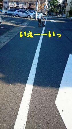 1527121036055-15.jpg