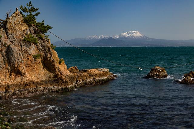 大山 日本海 河津桜 大根島 夫婦岩