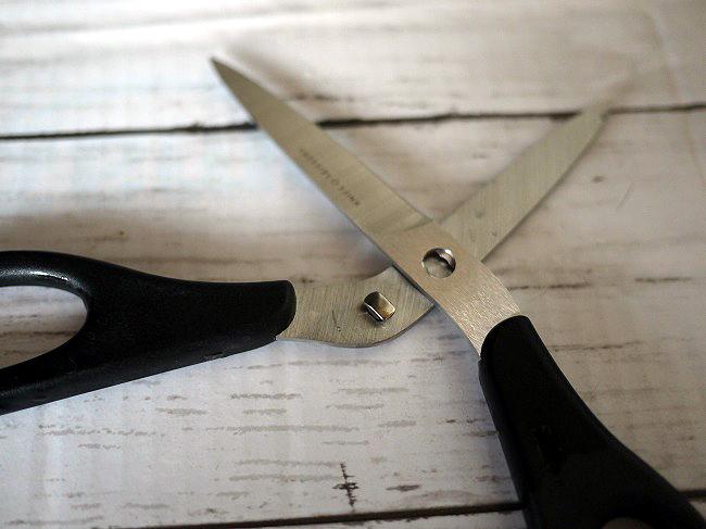 remyナイフなハサミ