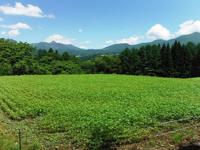 根小屋城(長野市戸隠) (4)