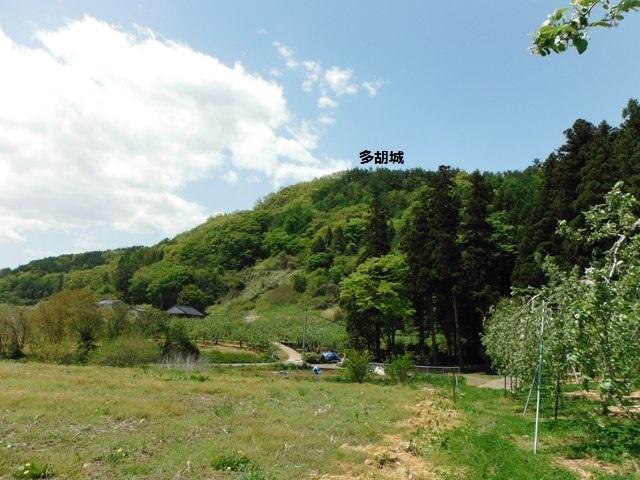 多胡氏館(長野市) (35)