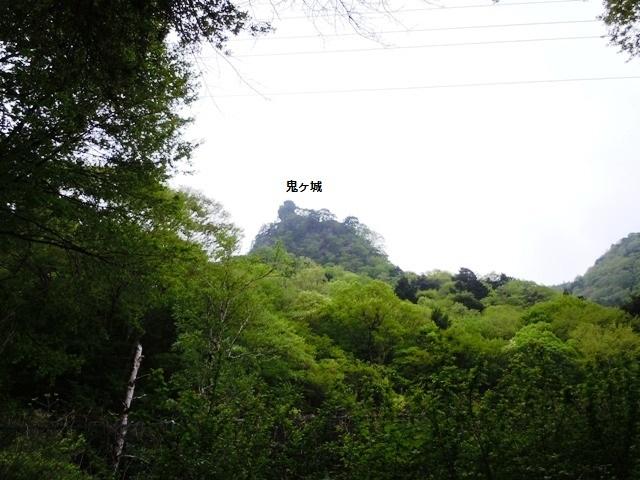 kakumaoni (41)