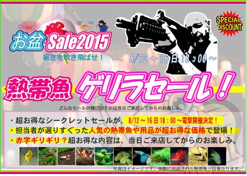 2015E3818AE79B86E382B2E383AAE383A9-thumbnail2.jpg