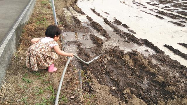 子供、ポンプの水で遊ぶ